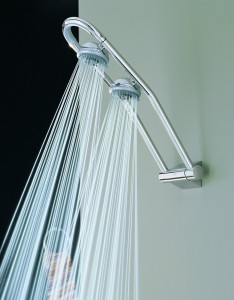 grohe freehander dual shower head