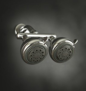 zoe industries neptune dual shower head
